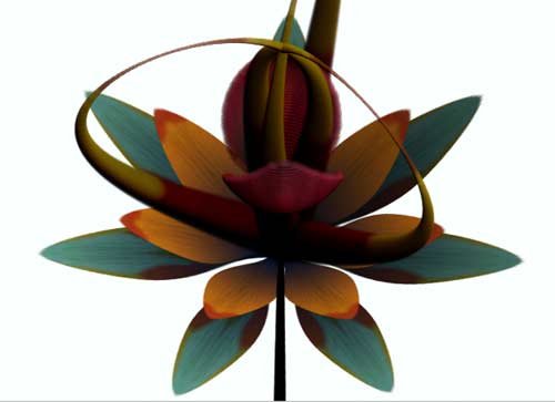 Bloom Flower Tool - Daniel Brown